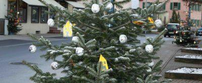 Weihnachtsbäume uff d'r Kö in Ehningen