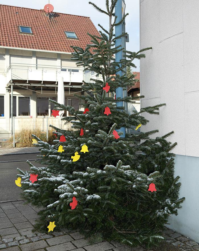 Weihnachtsbaum Ehningen 2017